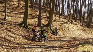 Motocykliści zniszczyli nadmorskie lasy. Myśleli, że nikogo w nich nie ma