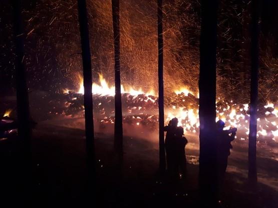Pożar stosu drewna w lasach Nadleśnictwa Sulechów