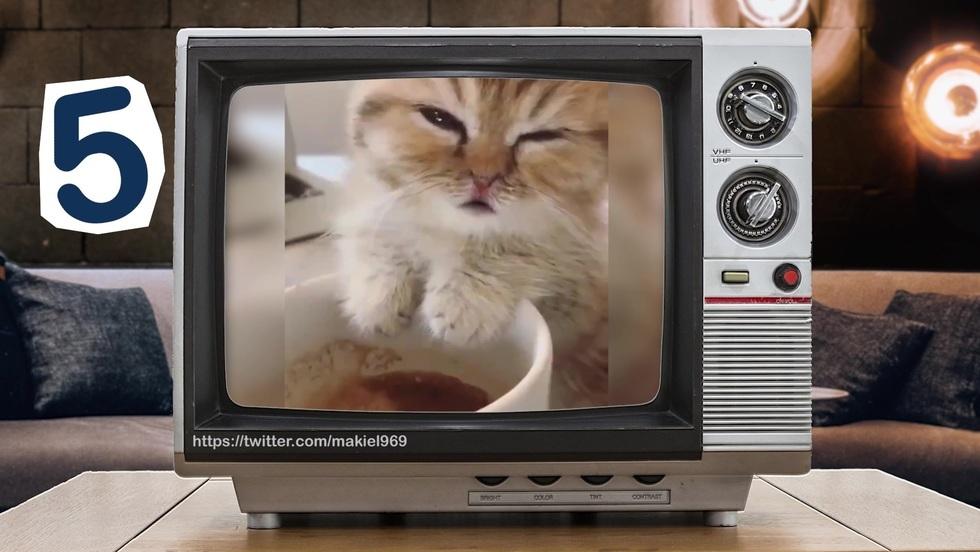 Sieciówka - odcinek 23